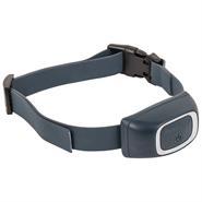 2228-1-pet-safe-zusaetzliches-empfaengerhalsband-fuer-hunde-erziehung-und-training.jpg