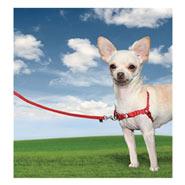 Easy Walk - Hunde Geschirr, X-Small, rot