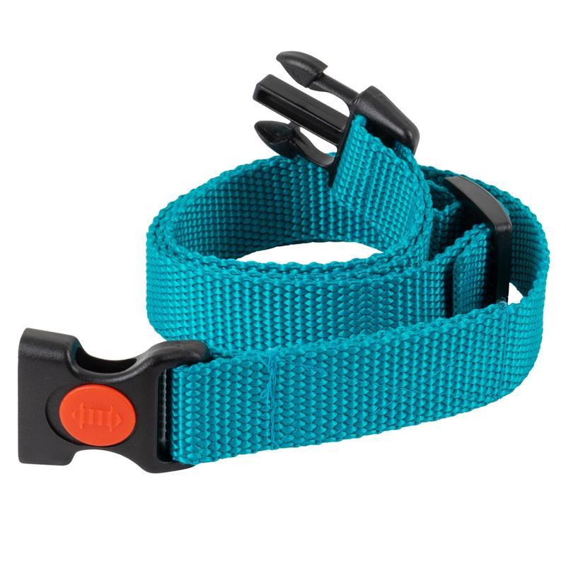 24491-04-d-control-mini-d-mute-s-antibell-ersatzhalsband-dogtrace-hochwertig.jpg