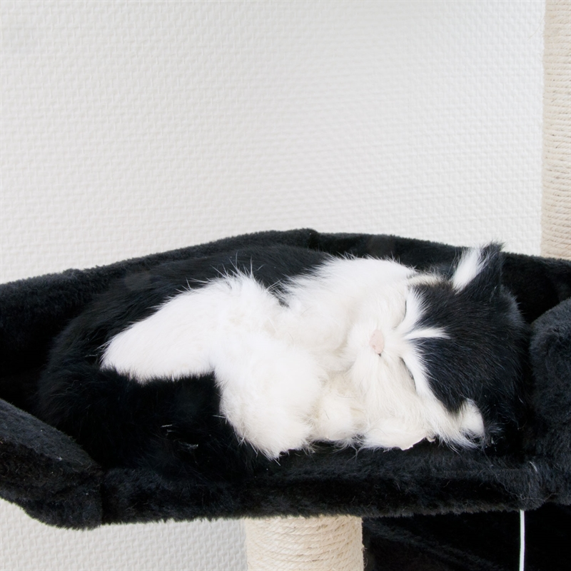26610-Ollie-Kratzbaum-gross-fuer-Kater-cat-scratcher-fun-schwarz.jpg