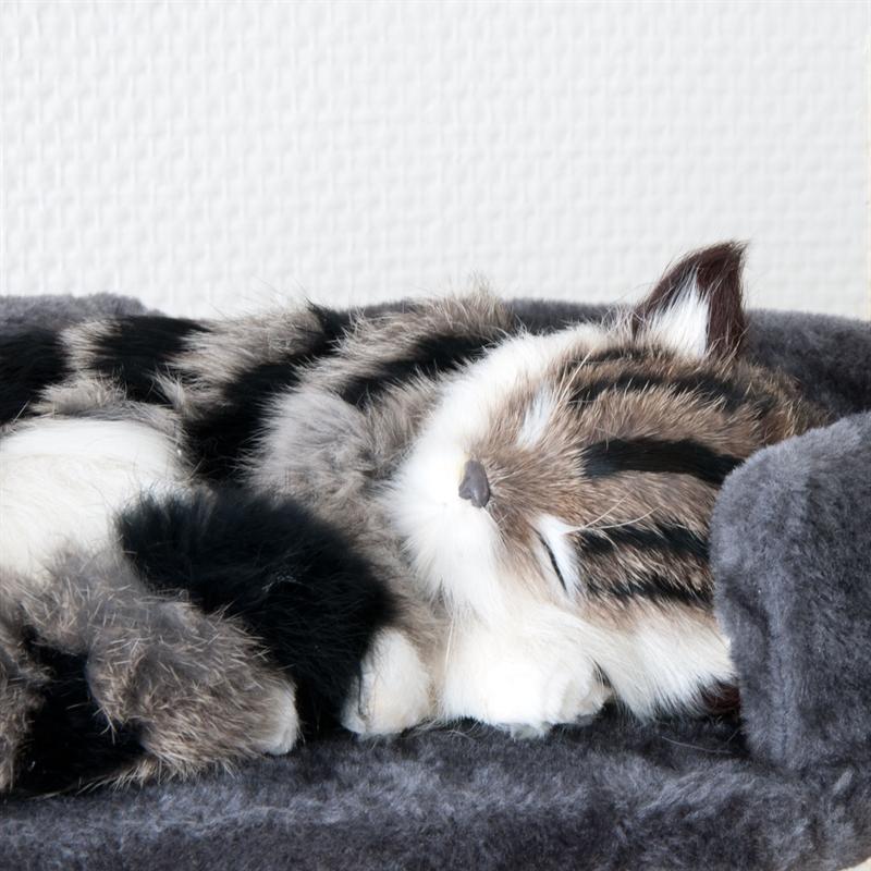 26610-Ollie-dunkel-grau-Kratzbaum-gross-Kletterbaum-fuer-Katzen-cat-tower-climbing-toys.jpg
