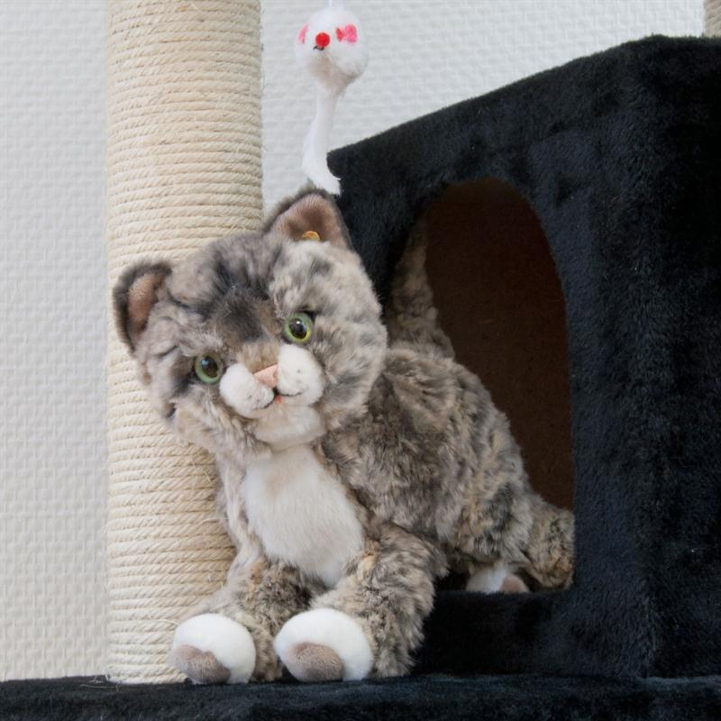 26610-Ollie-schwarz-Kratzbaum-gross-Kletterbaum-fuer-Katzen-cat-tower-climbing-toys.jpg