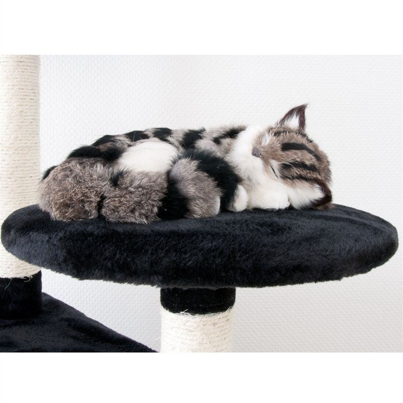 26620-Aspen-Kratzbaum-gross-fuer-Kater-cat-scratcher-fun.jpg