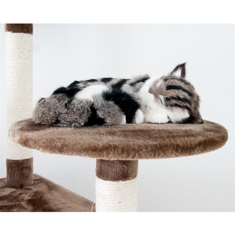 26620-Aspen-braun-Kratzbaum-Katzen-hinstellen-cat-condo-tree-voss-mini-pet.jpg