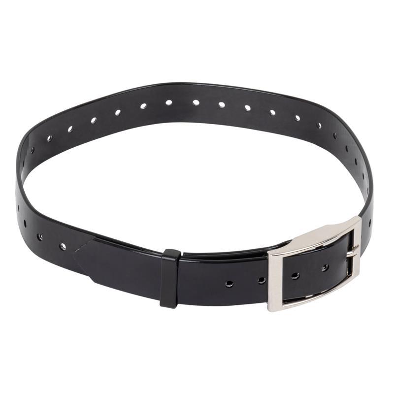 2952-hundehalsband-fuer-hunde-ferntrainer.jpg