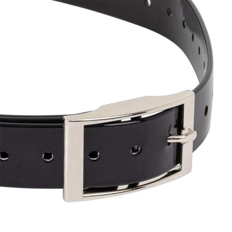 2952-robustes-ferntrainer-halsband.jpg