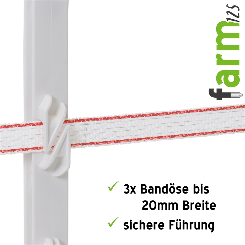 44458-Kunststoffpfahl-mit-Halterungen-fuer-Weidezaunband-20mm-farm125-VOSS.farming.jpg