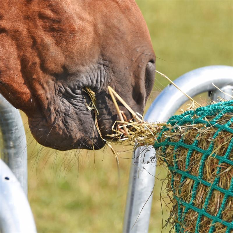 504590-voss-farming-rundes-futtersparnetz-fuer-ponys-pferde.jpg