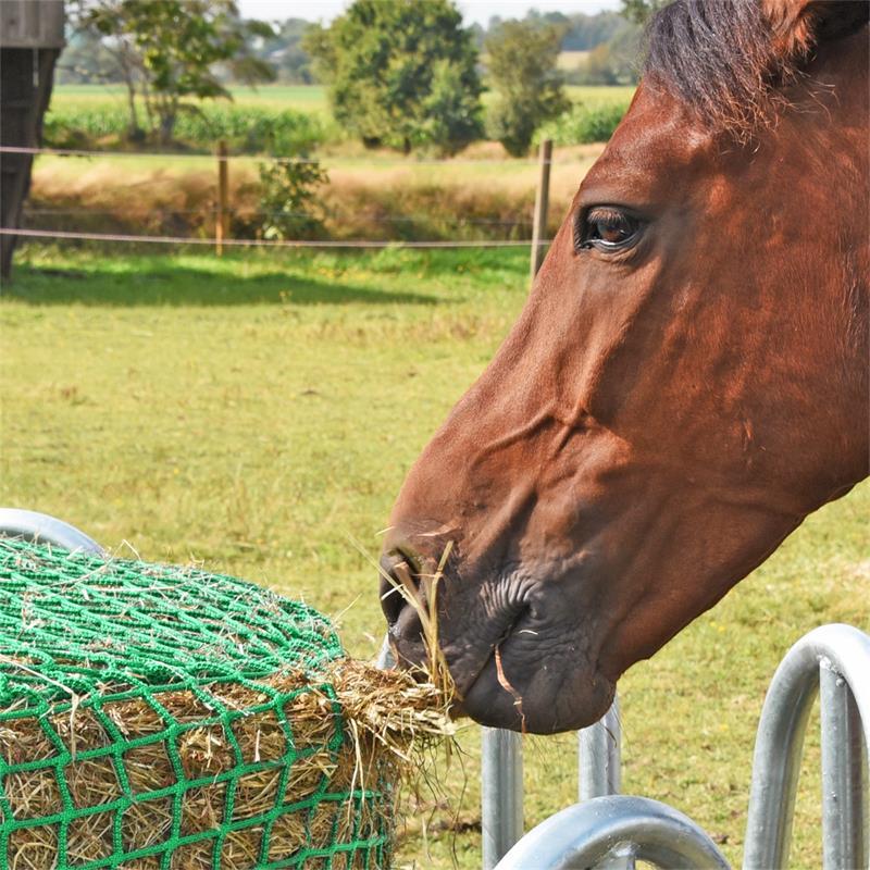 504592-voss-farming-rundes-futtersparnetz-ponys-pferde-350cm.jpg