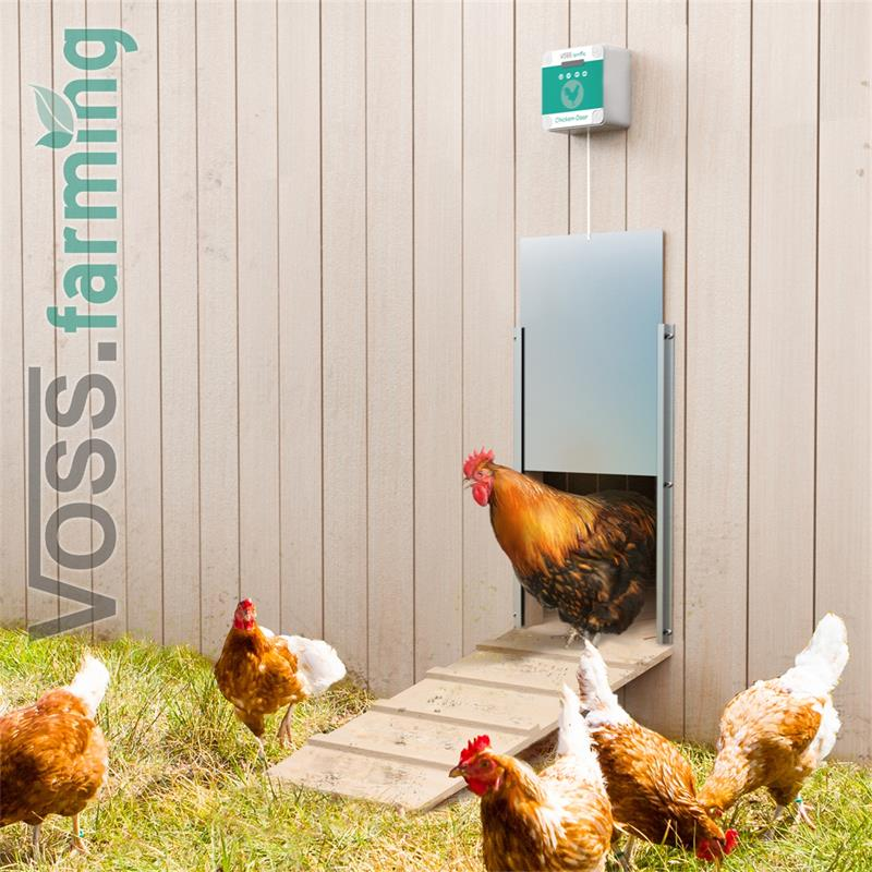 561852-voss-farming-praktische-automatische-huehnerklappe-anwendungsbild.jpg