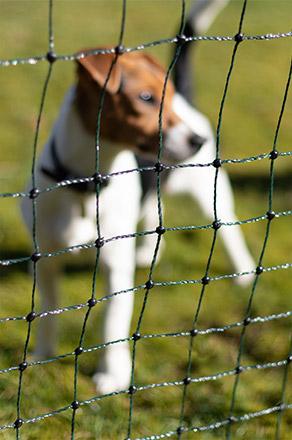 Begrenzungszaun Absperrzaun Haustierzaun grün 50m//112cm Garten Zaun Hunde