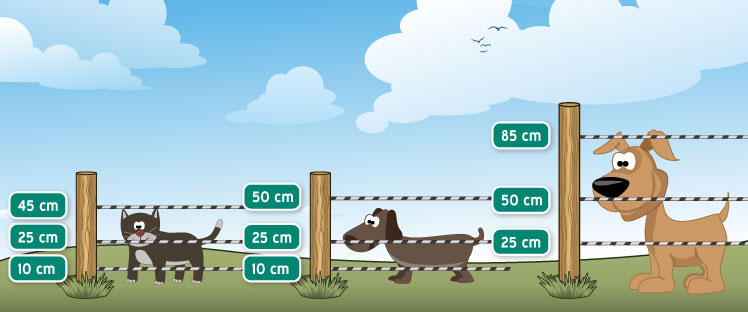 Einzäununghöhen für Hunde und Katzen.